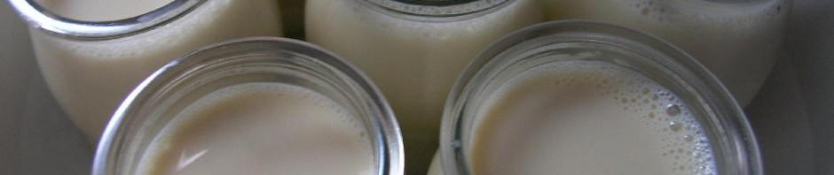 iogurt_soja-940x198